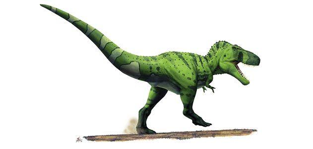 wild-things-Tyrannosaurus-rex-631.jpg