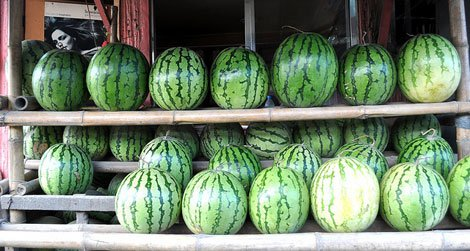 Delicious looking watermelons