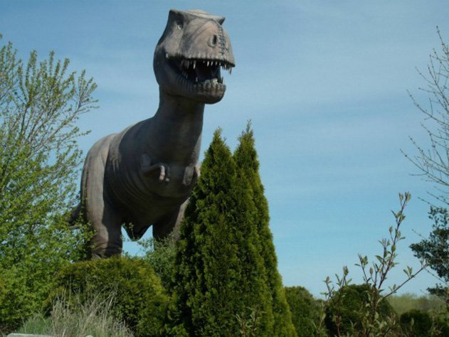 T-rex Teeing Off