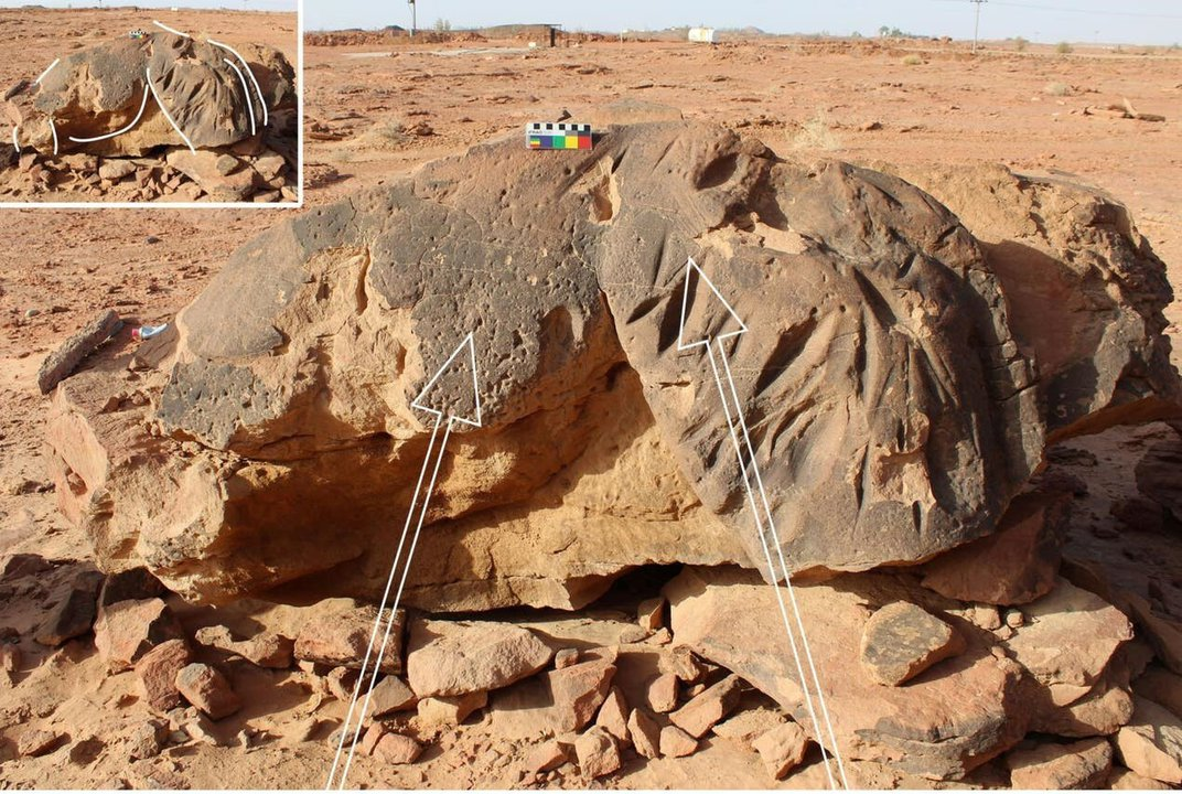 Life-Size Camel Sculptures in Saudi Arabia Are Older Than Stonehenge, Pyramids of Giza
