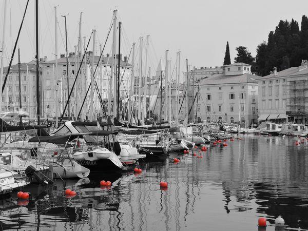 Red buoys thumbnail