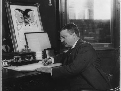 Theodore Roosevelt regularly employed executive orders to achieve his political goals.
