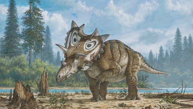 Two New Discoveries Add to a Horned Dino Revolution