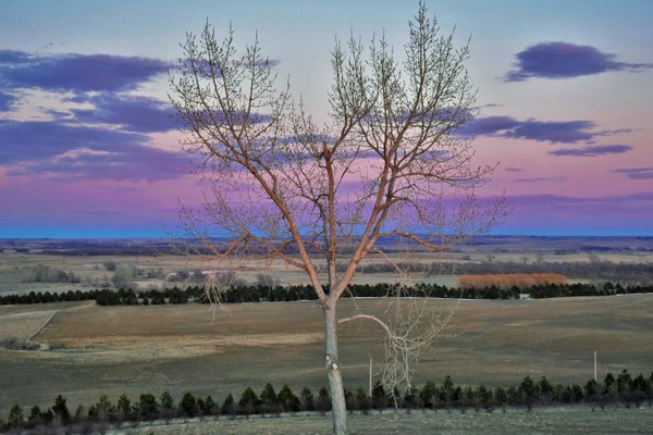 Blue and purple eastern sky during a sunset in North Dakota. thumbnail