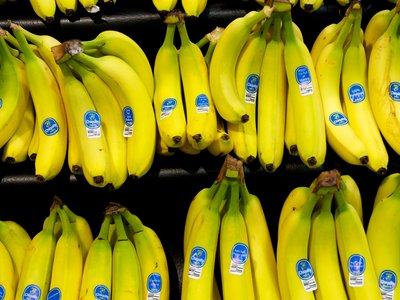 Yes, we have no bananas: Bananas may be plentiful on store shelves today, but since Americans commercially eat only one variety, our banana supply (like many other foods) is vulnerable to disease or other dangers.