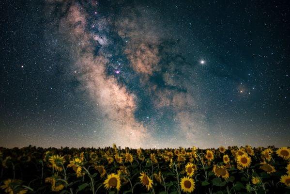 Stargazing thumbnail