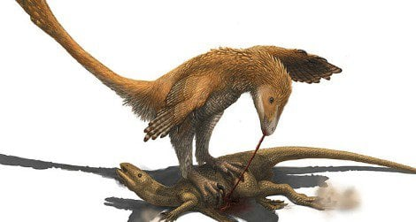"""Did Deinonychus and other """"raptors"""" use their foot claws to restrain prey?"""