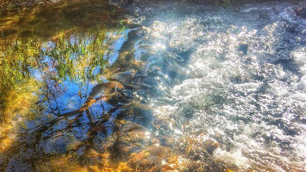 Creek in morning light. thumbnail