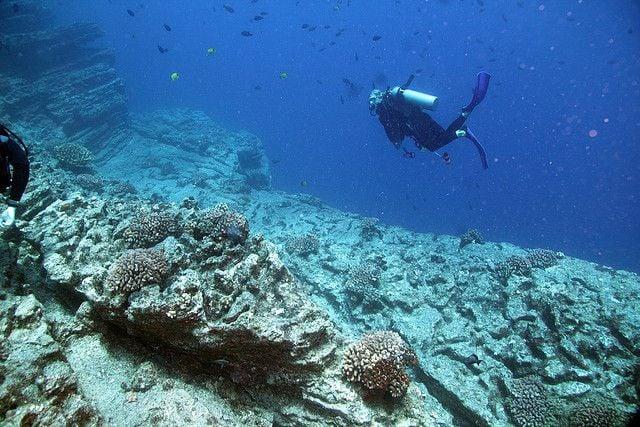 Divers explore Kauai's reefs