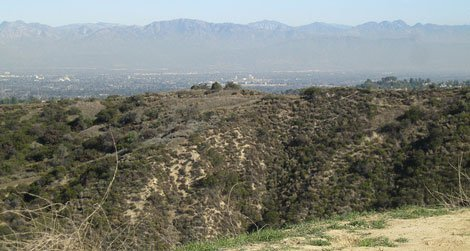 The view from the Dirt Mulholland