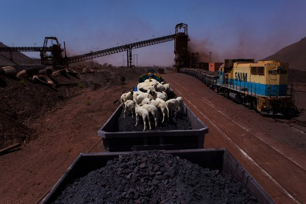 Sheep travel atop the Mauritanian iron ore train thumbnail