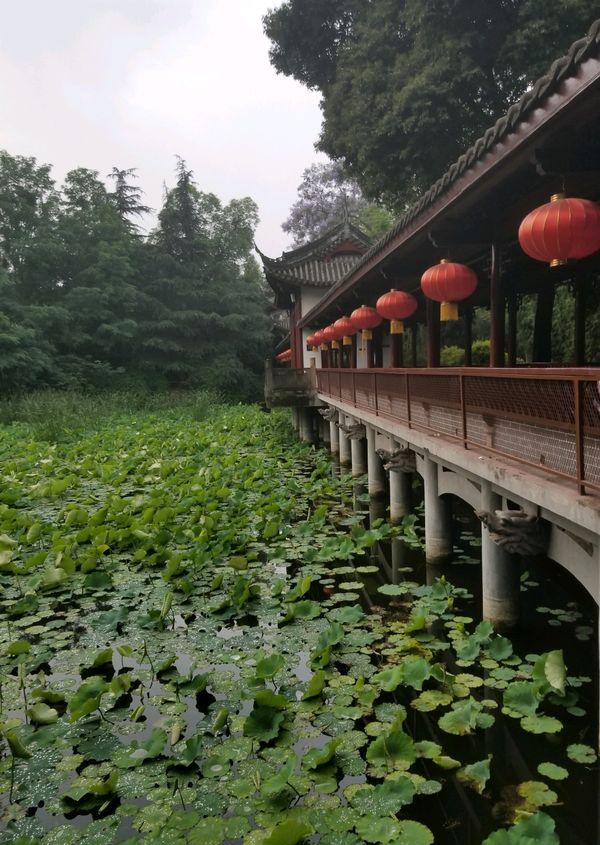 Teahouse Pond thumbnail