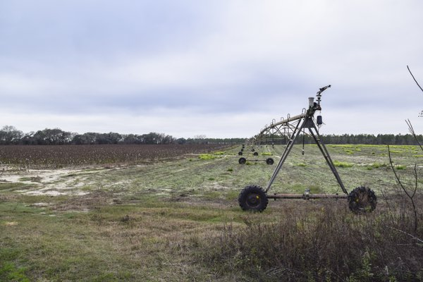 Cotton Field Irrigation thumbnail