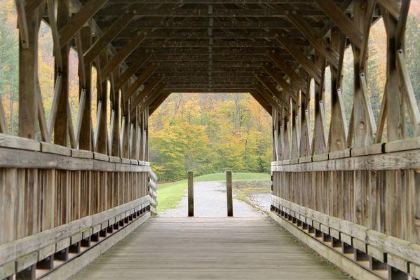 Foliage through the cracks of Marilla Covered Bridge thumbnail