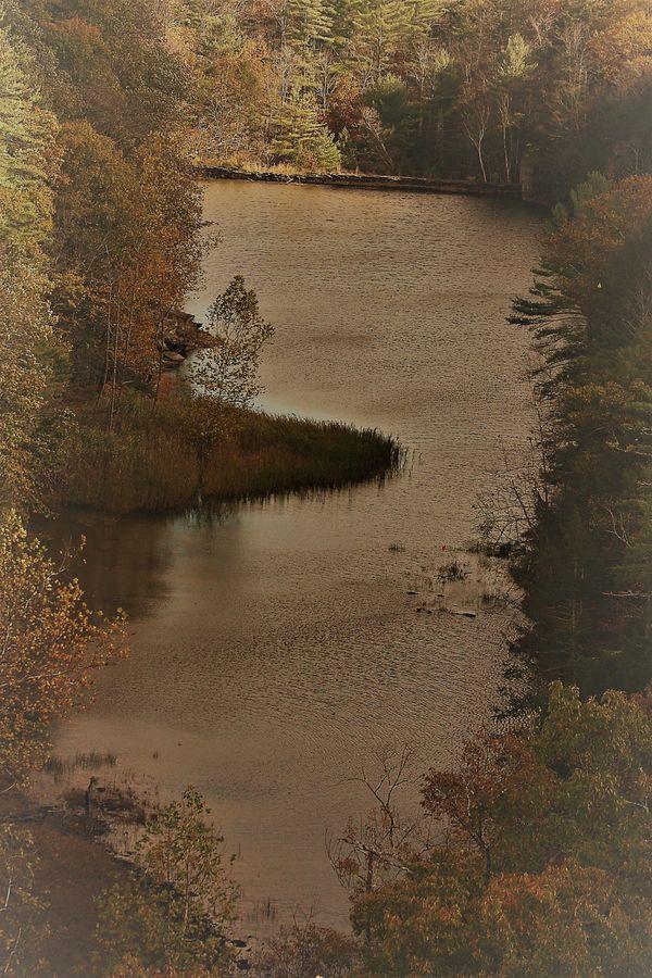 Pond along Ashokan Reservoir thumbnail