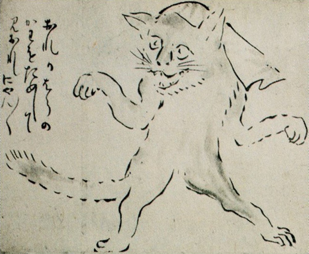 Japan's Love-Hate Relationship With Cats