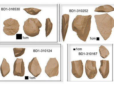 The latest findings suggest that separate groups of early humans invented stone tools on multiple occasions