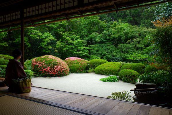 心地良い庭園 thumbnail