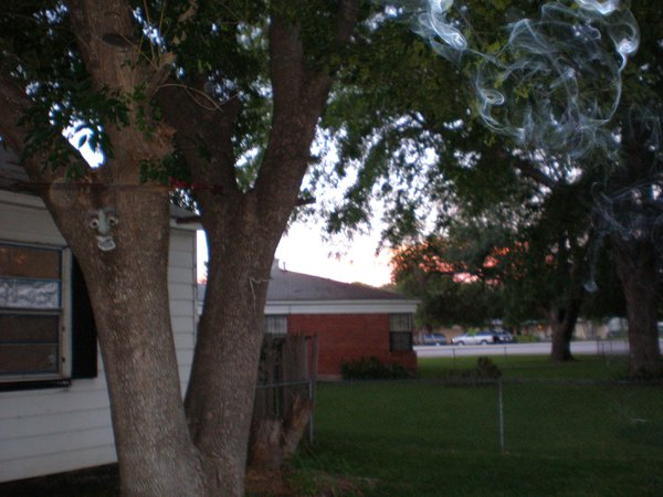 Bright orange cloud blew in while standing in front yard. thumbnail