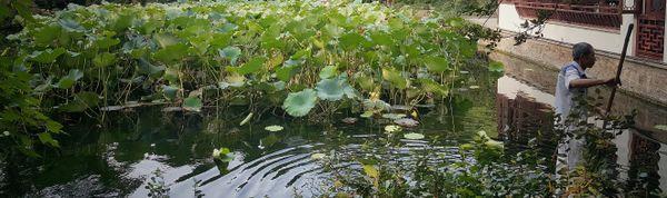Limitless - Guyi Garden - Shanghai-China thumbnail