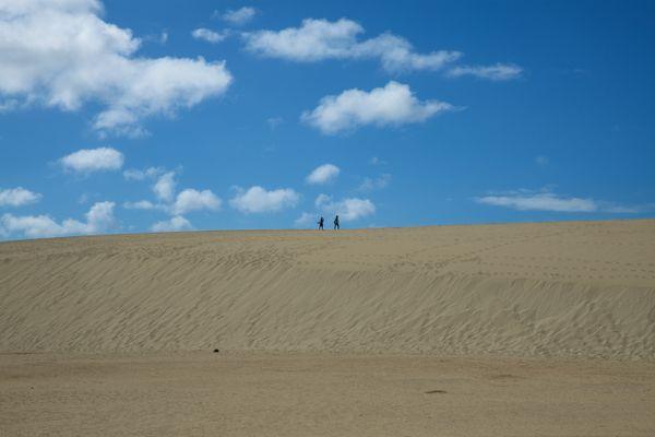 Dunes thumbnail