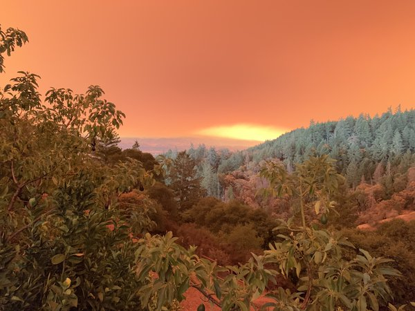 Turning day to night, Camp fire smoke, Mendocino Co., CA thumbnail