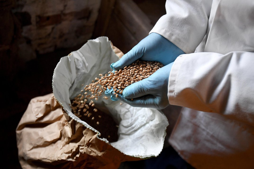 One-Thousand-Year-Old Mill Resumes Production to Supply Flour Amid Pandemic
