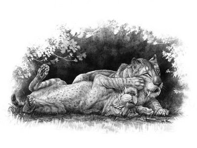 Illustration of Smilodon fatalis cubs playing together.