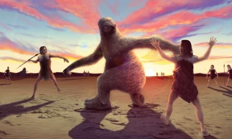 Sloth Fight