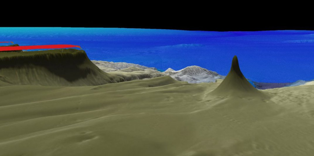 A map of the seafloor. The computer-generated map shows waves of sand in the foreground with a tall, rocky plateau on the left. On the right is the newly discovered reef. It's wide at the bottom and tapers at the top. There are underwater hills and rocks