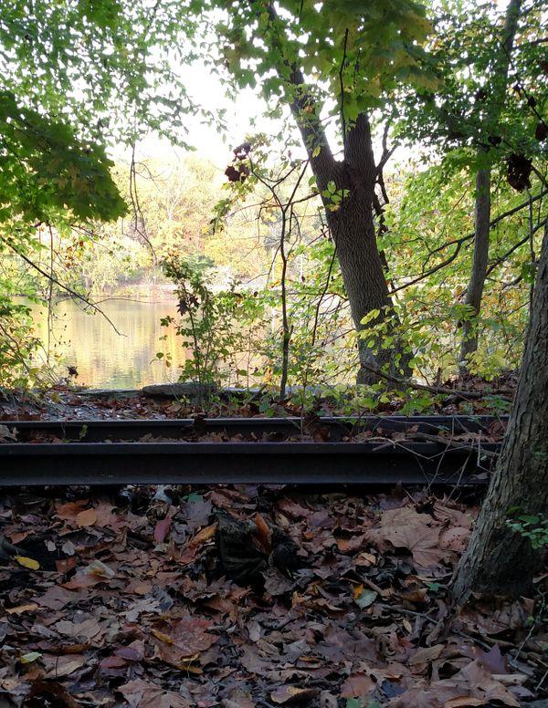 Abandoned railroad tracks thumbnail