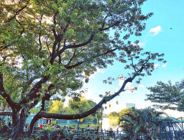 Yangon's Evening thumbnail