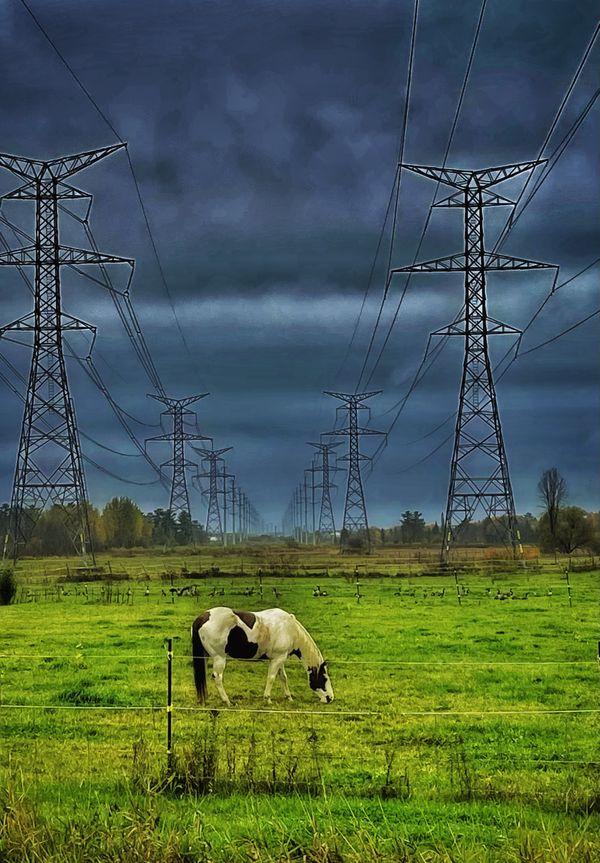 Storm Horse Power thumbnail