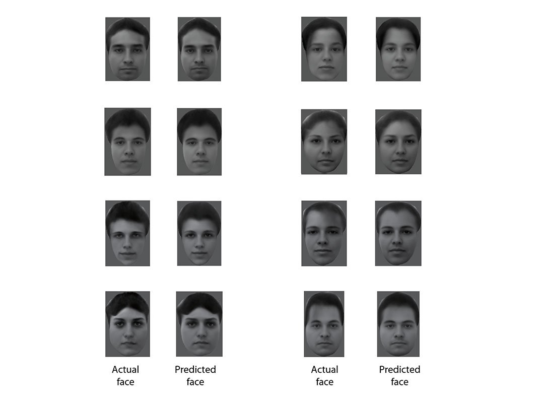 How Your Brain Recognizes All Those Faces