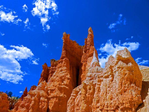 Hoodoo Heaven at Bryce Canyon thumbnail