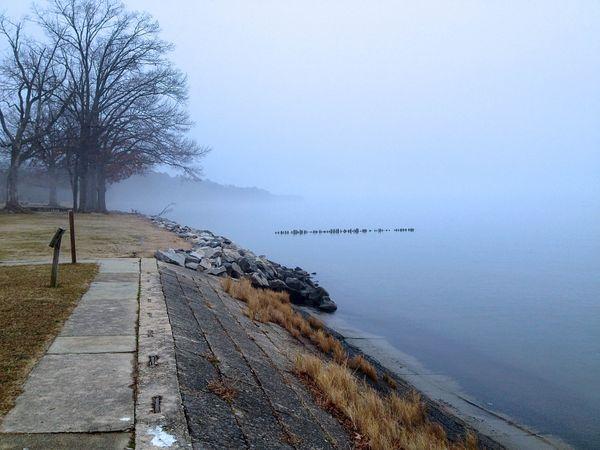 fog on a river  thumbnail