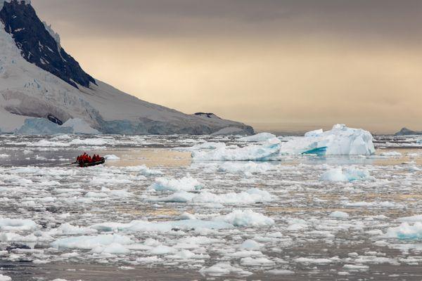 Neko Harbor, Antarctica thumbnail