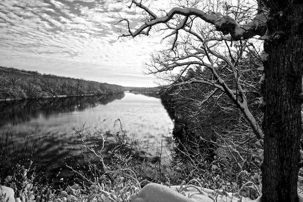 Potomac River Snow, Clouds and Tree thumbnail