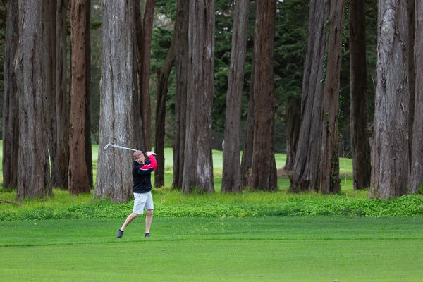 Golfer with redwood trees thumbnail