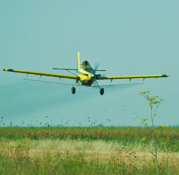 Crop duster by the Side of the Highway thumbnail