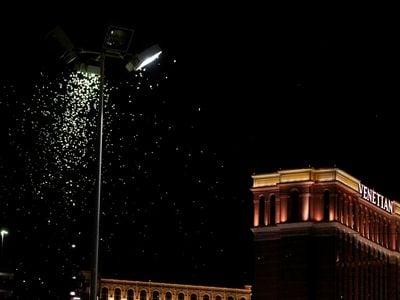Grasshoppers swarm a street light a few blocks from the Las Vegas Strip on July 26, 2019.