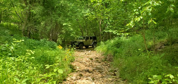 Tennessee Jeep thumbnail