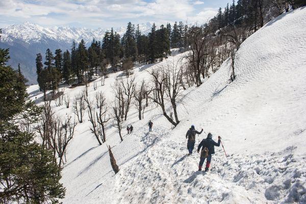 Trekker descending from the Kedarkantha peak, Uttarakhand, India. thumbnail