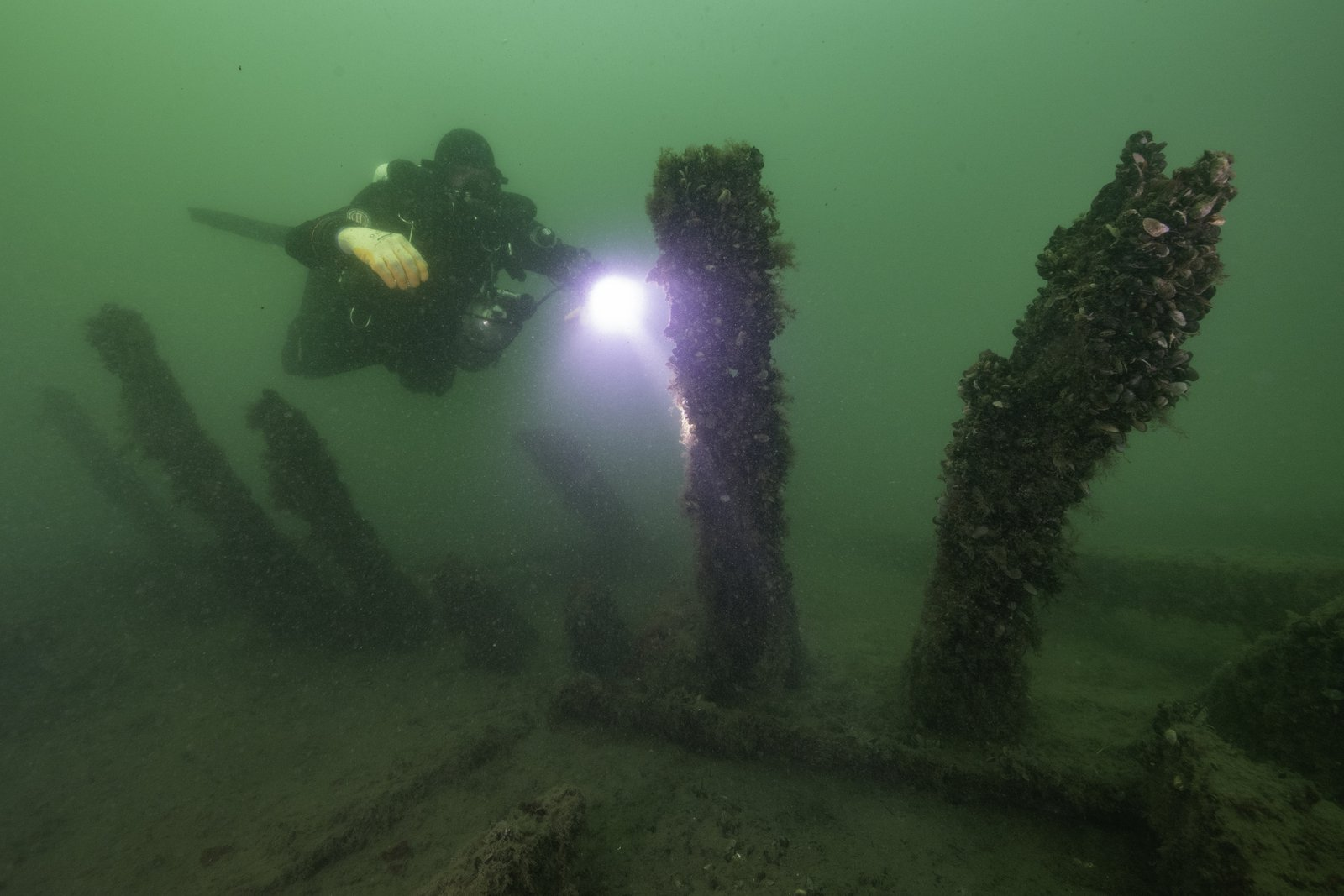 An Extraordinary 500-Year-Old Shipwreck Is Rewriting the History of the Age of Discovery