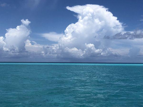 Bimini Bliss is the color Blue thumbnail
