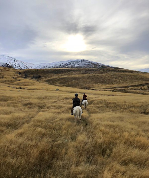 Horseback riding in NZ thumbnail