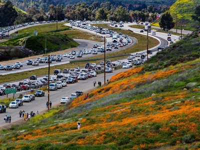 Wildflower enthusiasts waiting to exit toward Walker Canyon on March 9, 2019.