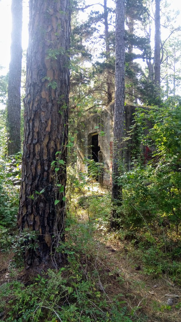 Ice house on abandoned WWll army camp thumbnail