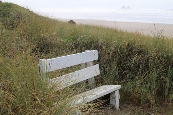 A Quiet Spot on the Oregon Coast thumbnail