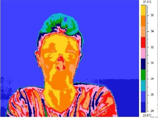 A thermal image of a lying subject gives away his bright red nose.